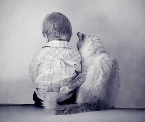 animal, b&w, baby, boy, cat, cute, friends, love, pet, kitty, sweet, photo, hug