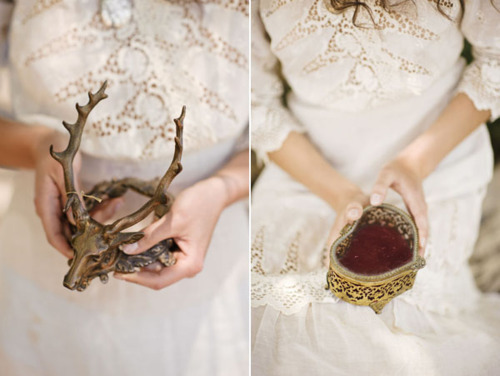 antlers, deer, photography, vintage, whimsical