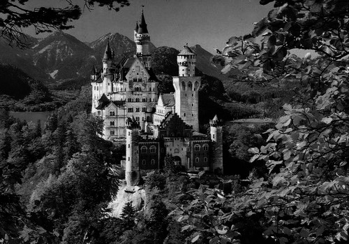 architecture, black and white, castle, forest, landscape, mountains, trees, vintage, woods