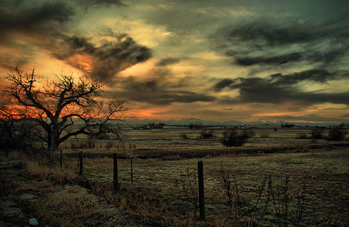 autumn, beautiful, clouds, colors, country, dirty, fields, landscape, messy, sky, sunset, tree, winter