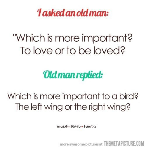 aww, bird, emotion, love, man, old, person, quote, true, wing