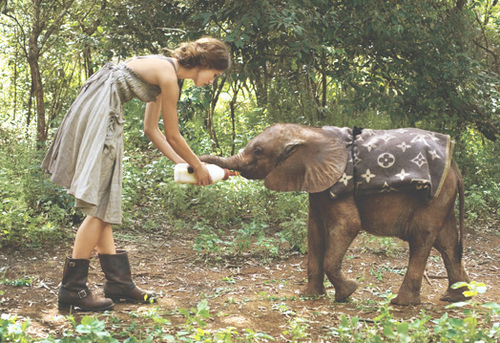 baby, dress, elephant, forest, girl