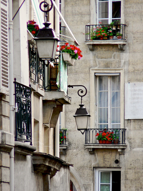 balcony, building, flowers, france, paris, window