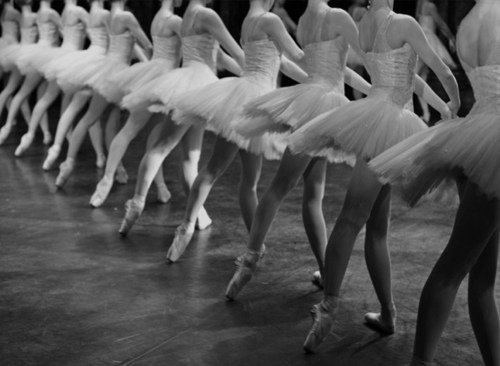 ballet, beauty, dance