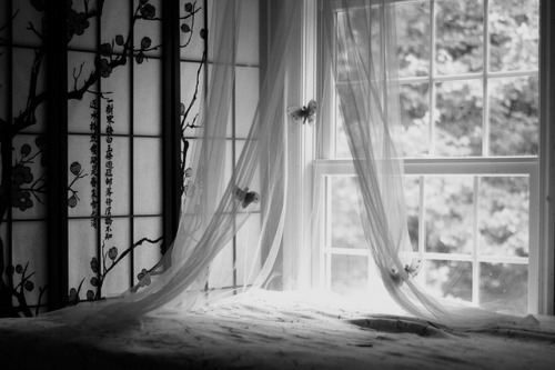 b&w, bed, bedroom, black & white, black and white, cute, photo, photography, place, room, window