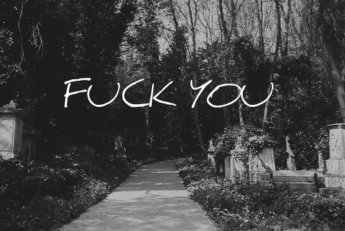 b&w, black & white, black and white, fuck, fuck you, landscape, nature, photo, photography, place, text, word, words