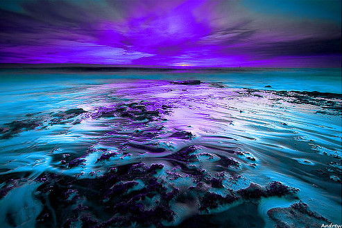 beach, blue, coral, ocean, photograph epicness, purple, rocks, sea, sunset, white