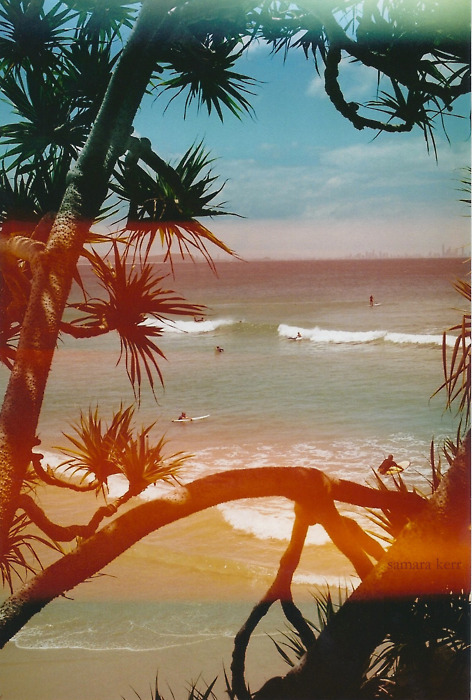 beach, ocean, paradise, photography, surf, vintage