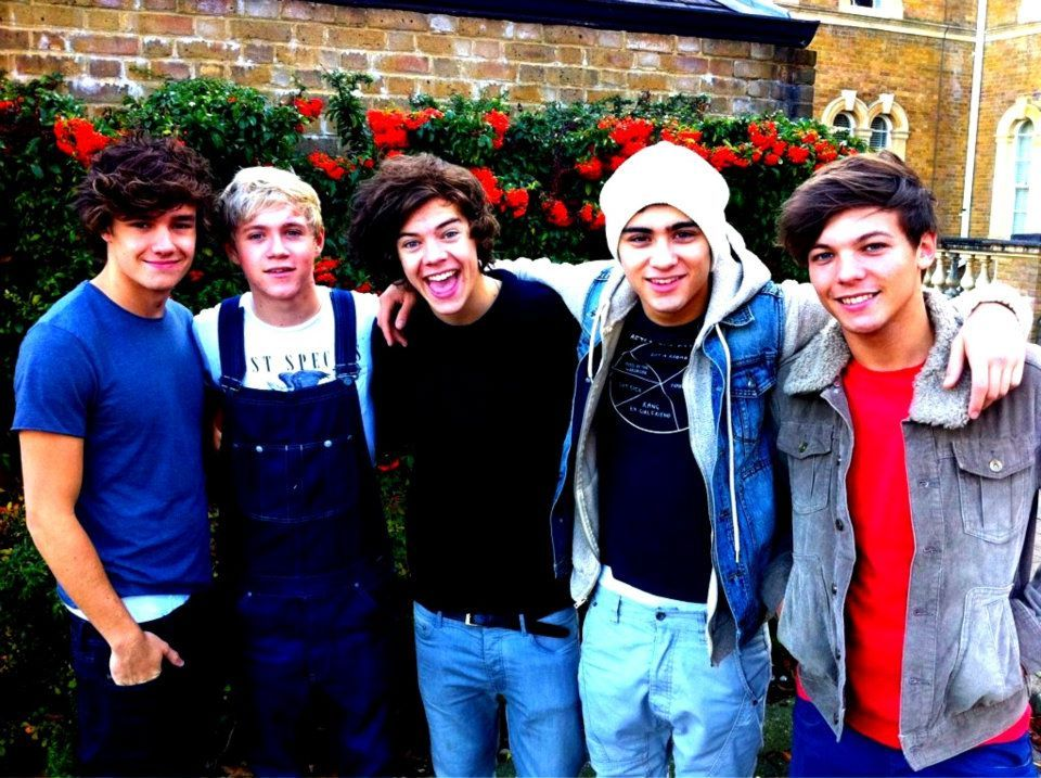 beautifu, boys, group, harry styles, liam payne