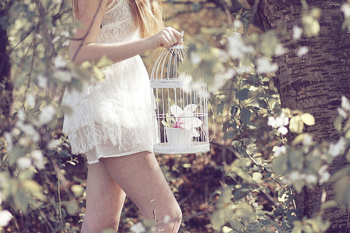 beautiful, bird, birdcage, cute, dream, dress, fashion, flower, girl, lace, pastel, photography, pretty, skinny, sweet