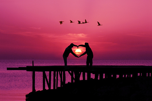 beautiful, birds, cool, heart, photography, pink, silhouette, sunset