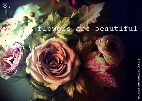 beautiful, classic, edit, flowers, flowers are beautiful, indie, inspirational, photo, phtography, pretty, quote