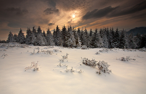 beautiful, cloudy, landscape, nature, sky, snow, storm, sun, trees, winter