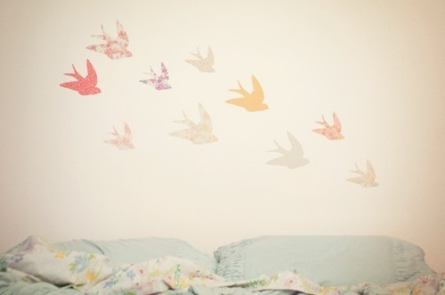 bedroom, birds, cute, girl, photography