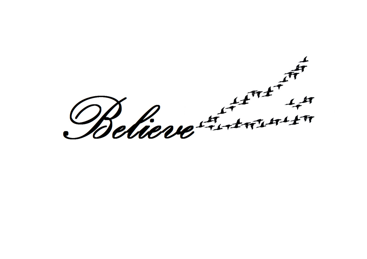 believe, bird, birds, quote