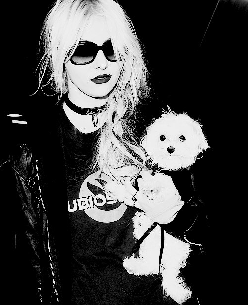 black and white, dog, famous, glasses, hair, taylor momsen, the pretty reckless, tpr, wonderful