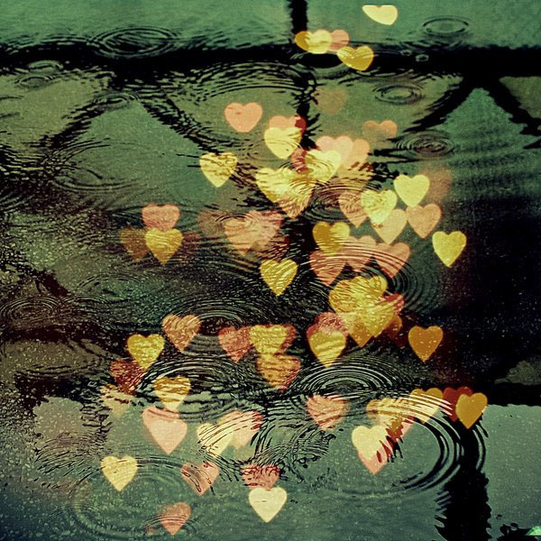 bokeh, hearts, love, photography, photoshop, puddle, rain, raindrops, water