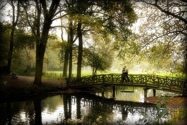 bridge, dutch, idyllic, love, nature