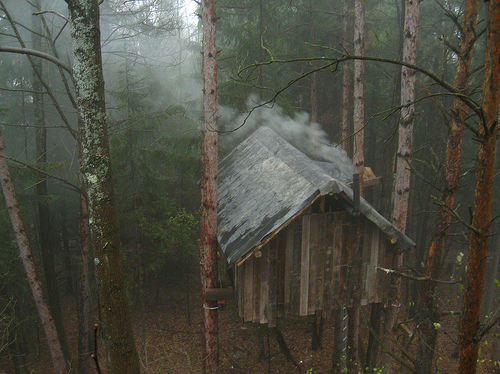 cabin, cottage, forest, nature, trees