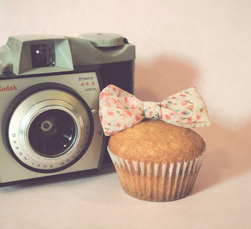 camera, cool, cute, fashion, muffin