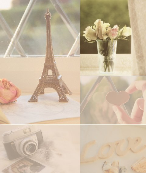 camera, flower, heart, love, paris