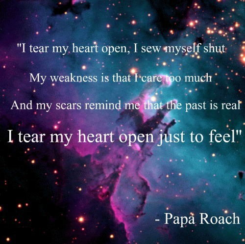 care too much, feel, heart, open, papa roach