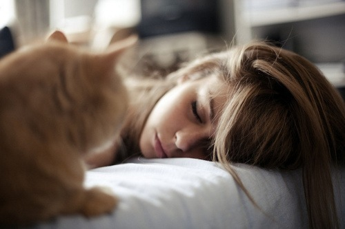 cat, girl, sleep