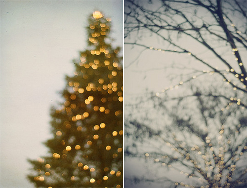 christmas, christmas tree, fairy lights, gorgeous, lights, photography, pretty, snow, tree, winter