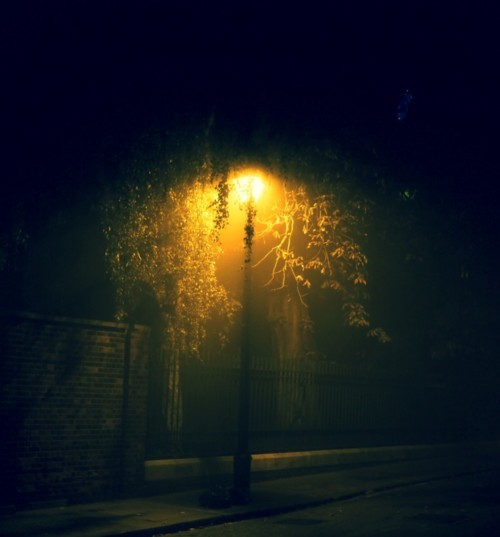 cold, cool, green, life, light, london, night, yellow