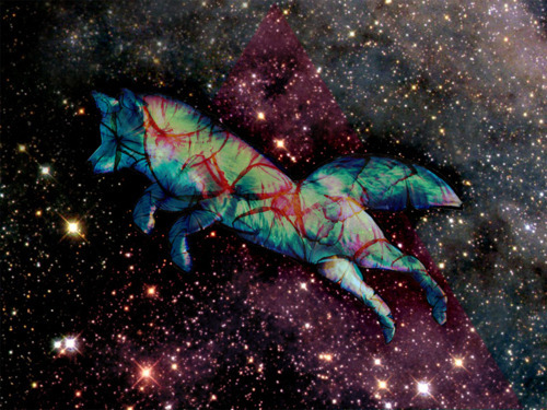 colorful, colors, night, starry, stars, wolf