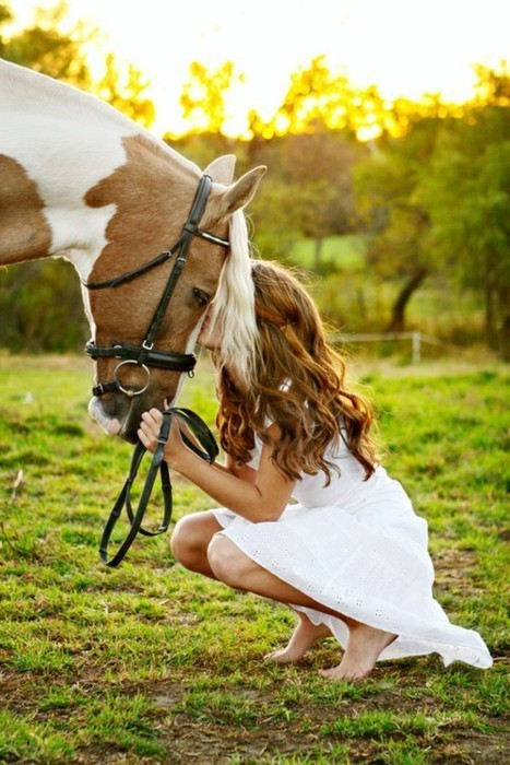country, horse, summer