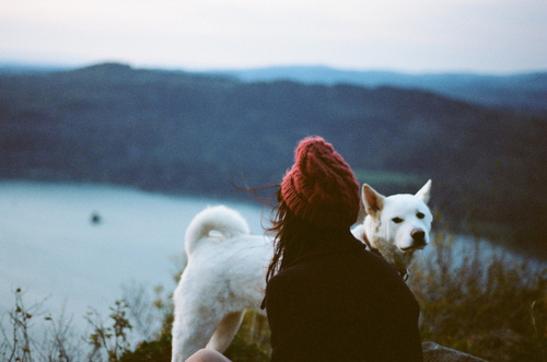 dog, girl, photography