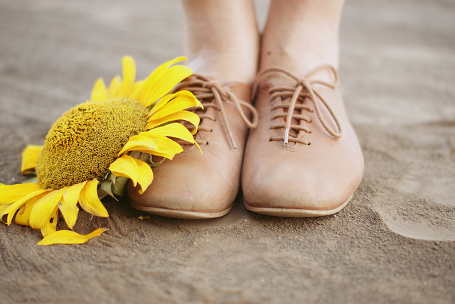 feet, girl, oxford, shoes, sunflower