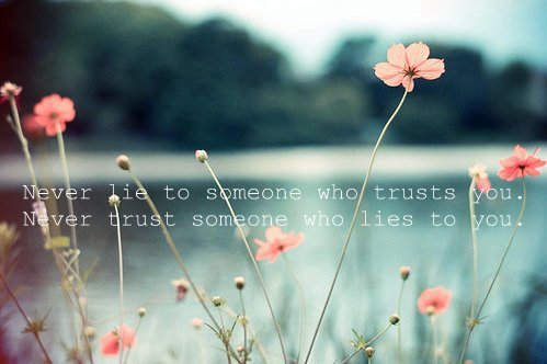 flower, lie, never, somone, text, true, trust, who, word, you