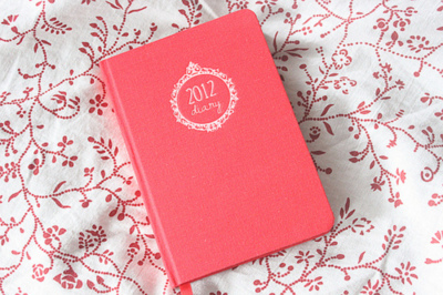 2012, blanket, cute, diary, girly, pink