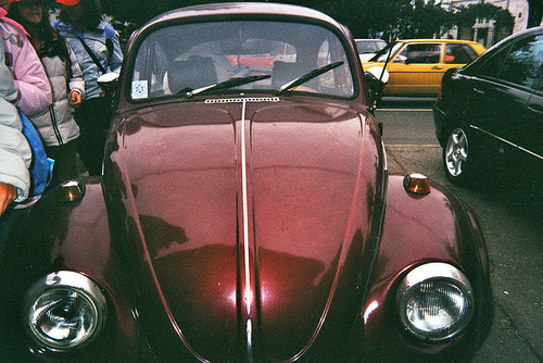 60s, adorable, art, beautiful, beetle