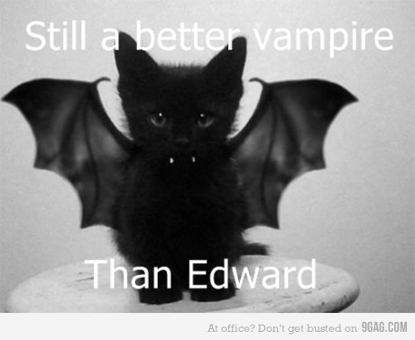 9gag, black cat, cat, edward, kitty, shut up already, twilight, vampire