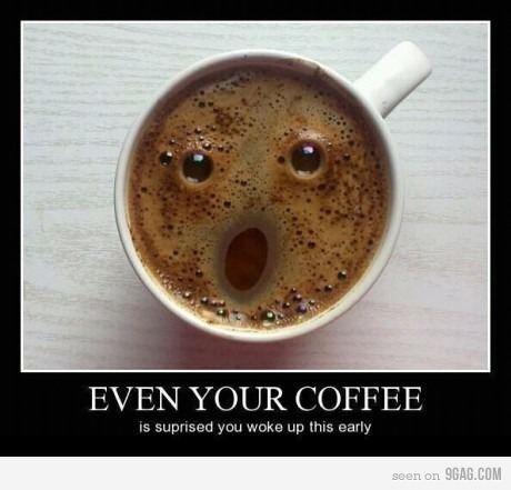 9gag, coffee, cute, funny, funny pictures