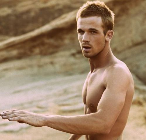 abs, actor, boy, cam gigandet, cam giganted