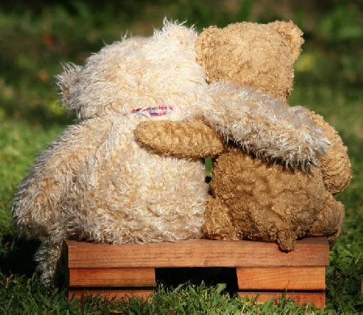 adorable, bears, cute, friends, hugging