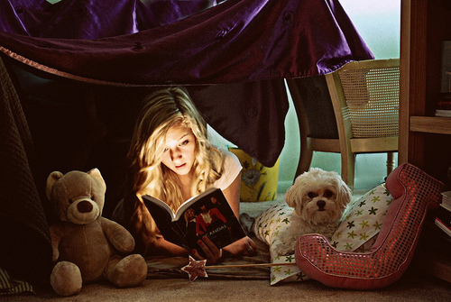 alone, bear, book, cute, dog, girl, lights, puppy, read