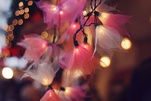 amazing, bulb, color, colour, cute
