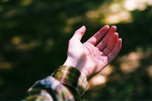analog, beautiful, boy, grain, green