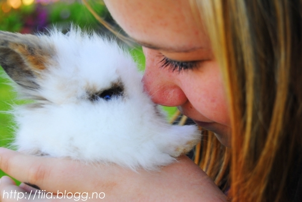 animal, best, brown hair, brunette, bunny, cute, girl, hair, karoline, love, rabbit, rabit, sweet
