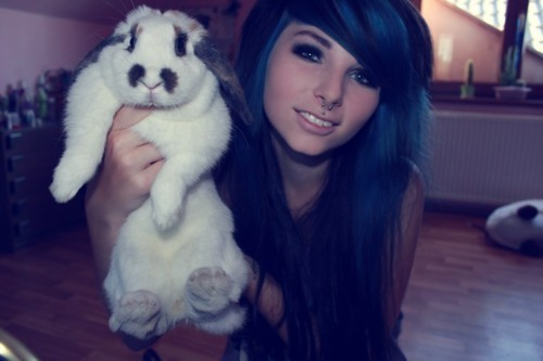 animal, blue hair, bunny, girl, photo
