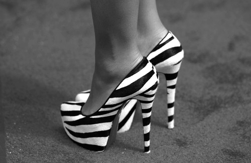 animal print, black, heels, high heels, shoes, white, zebra