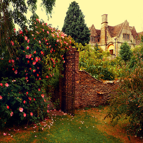 antique, architecture, castle, flor, garden