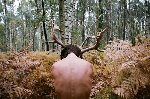 antlers, art, back, boy, brunette, cute, hipster, indie, muscles, nature, photography, spine, vintage, woods