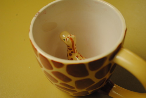 anything, coffee, cute, giraffe, inside