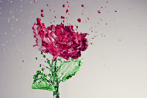 art, beauty, cute, flower, flowers, love, pink, red, sweet